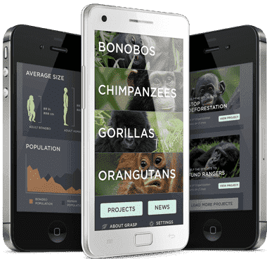 apeApp launched at Mobile East Africa
