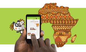 "Africa has moved from mobile first to ""mobile only market"
