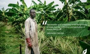 5 agri-tech ventures disrupting agriculture in West Africa