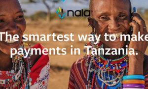 Nala From Tanzania Wins Ecobank Fintech Challenge