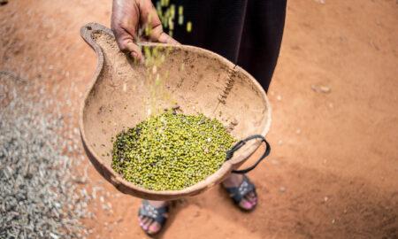 African InsureTech Platform Pula raises $6mn Series A